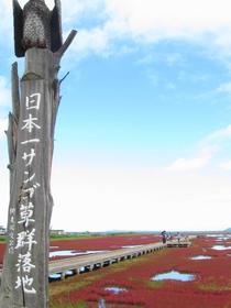Ubaranai Sango-so Colony image