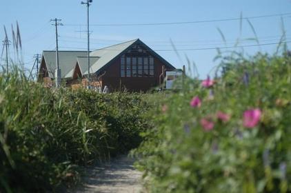 Notsuke Peninsula Primeval Flower Garden image
