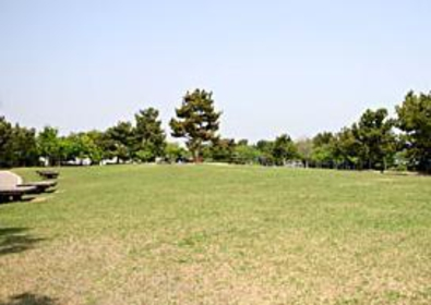 片男波公園 image