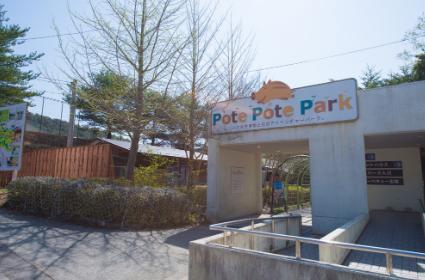 るり渓温泉 ポテポテパーク image