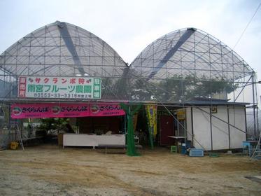 雨宮フルーツ農園 image
