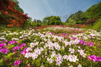 花木園 image