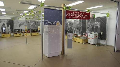 Asahikawa City Museum image