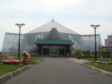 函館市熱帶植物園 image