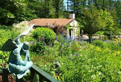 風之花園 image
