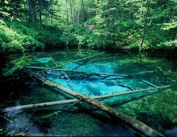 神の子池 image