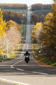 Milk Road image