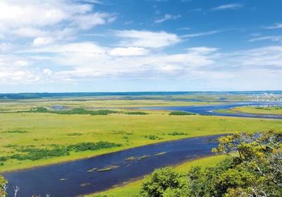 Kiritappu Wetland image