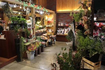 Asahikawa Craft Select Shop image