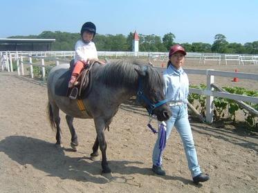 Kushiro Fureai Horse Park image