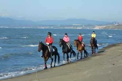 Frontier Equestrian Club image