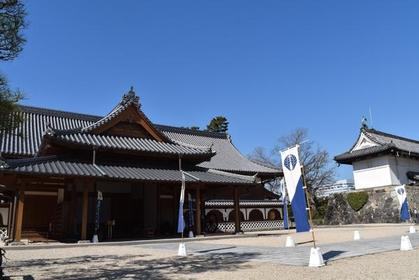 Saga Castle History Museum image