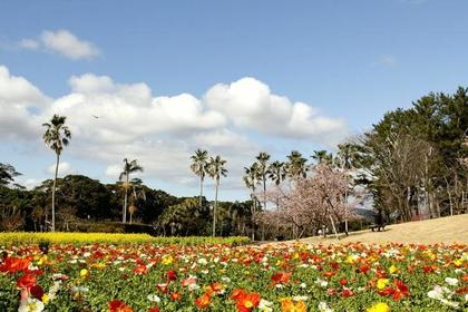 鹿兒島花卉公園 image