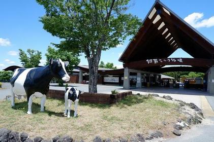 Aso milk ranch image