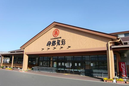 Itosaisai, JA Itoshima Market direct from the grower image