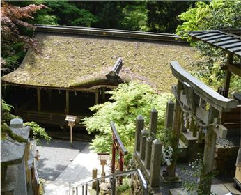 Yuki-jinja Shrine image