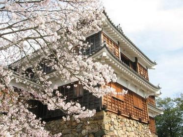 福知山城 image