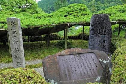 善峯寺の遊龍松 image
