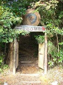 Yanbaru Discovery Forest, Kunigami Environmental Education Center image