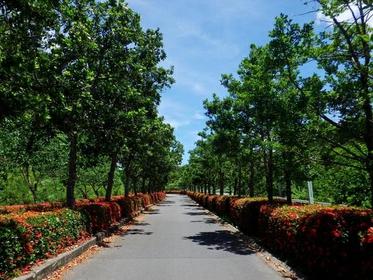 반나 공원 image