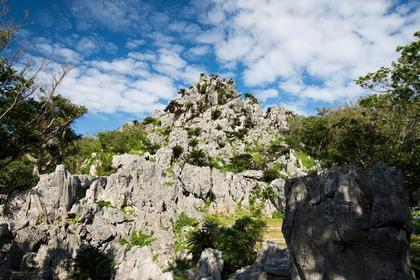 大石林山 image
