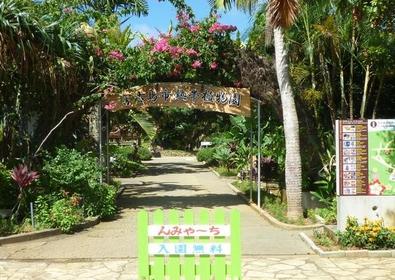 미야코지마시 열대식물원 image