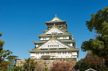 Osaka Castle Park image