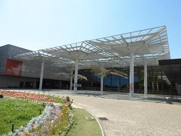 오사카시립 자연사박물관 image
