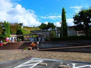 富田林市農業公園サバーファーム image