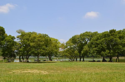 山田池公园 image