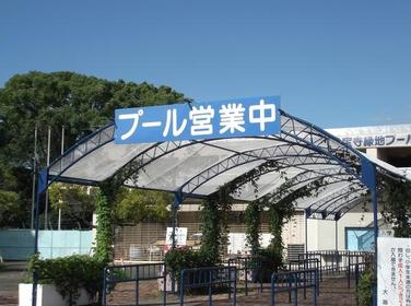 久宝寺绿地泳池 image