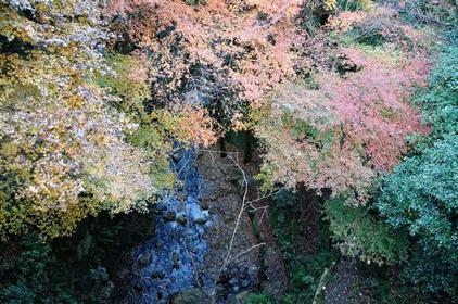 枚冈公园 image