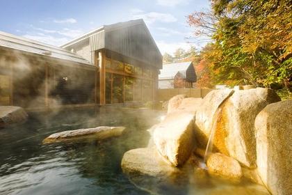 星野温泉 トンボの湯 image