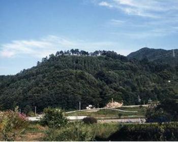 SanadashiCastle Ruins image