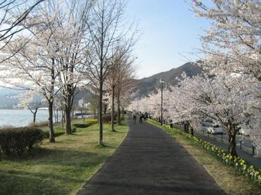 诹访市湖畔公园 image