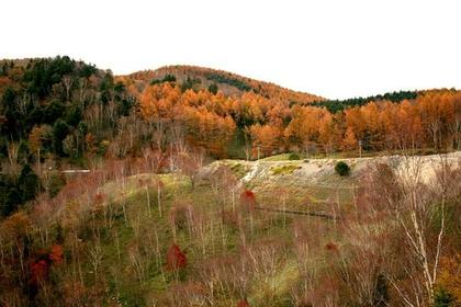 Shirabiso Highlands image