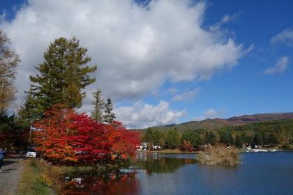 蓼科湖 image