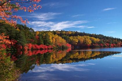 白駒の池 image