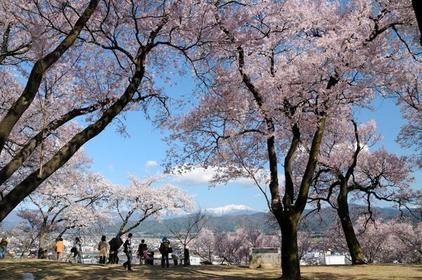春日公园 image
