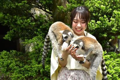 이즈 선인장 동물원 image