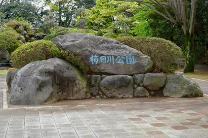 柿田川公園 image
