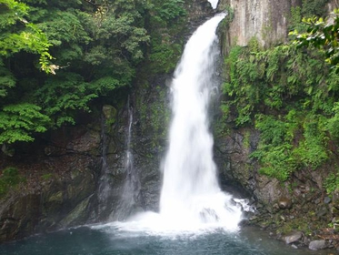 Kawazu Nanadaru Waterfalls image