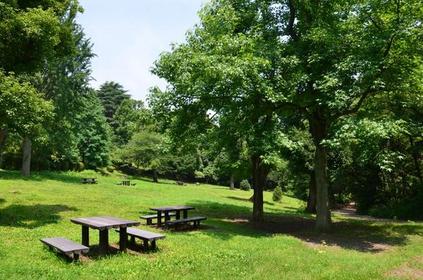 兒童自然公園 image