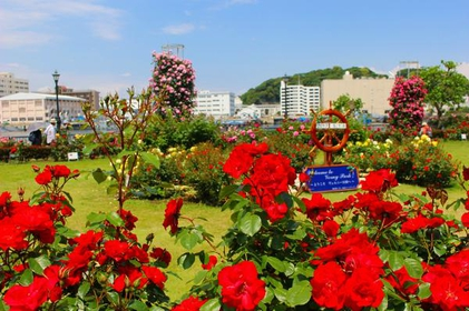 Verny Park image