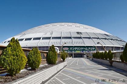 Nagoya Dome image