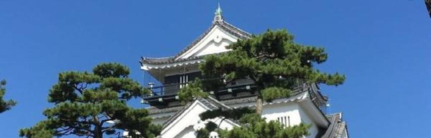 岡崎城 image