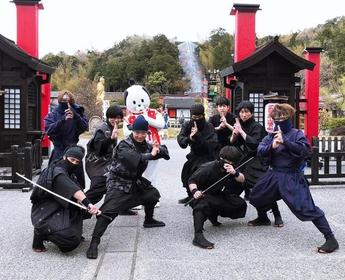 Ise Ninja Kingdom image