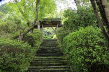 大愿寺 image
