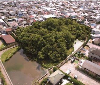 新宮蘭沢浮島植物群落(浮島の森) image