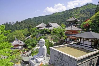 南法華寺(壷阪寺) image
